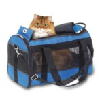 Carrying bag for dogs and cats Divina blue