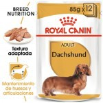 Royal Canin Teckel Dachshund Adult comida húmeda para perros
