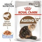 Royal Canin Ageing 12+ comida húmeda para gato sénior en gelatina