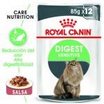 Royal Canin Digest Sensitive alimento húmedo para gatos