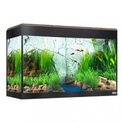 acuario de cristal fluval roma con pantalla led nogal - Peceras Grandes