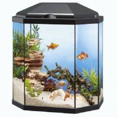 acuario ciano aqua light