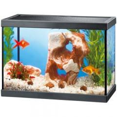acuario de cristal aqua negro