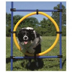 rueda agility perros