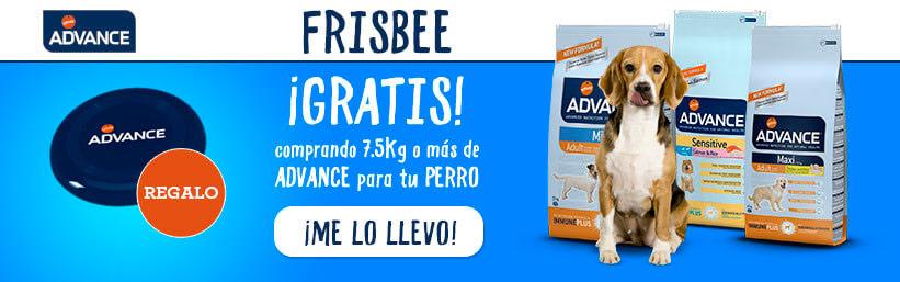 BNES-advance-frisbee-home