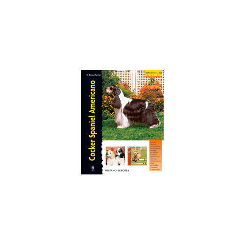 Cocker Spaniel Americano (Excellence)