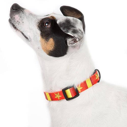 Collar para perros y gatos Selección Española Technical Pet