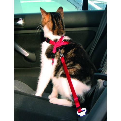 Arnés con cinturón de seguridad para gatos Trixie