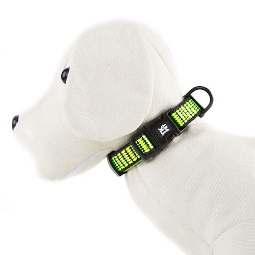 Collar para perros TK-Pet Urban Night lima reflectante