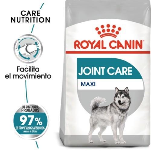 Royal Canin Maxi Joint Care pienso para perros