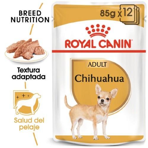 Royal Canin Chihuahua Adult comida húmeda para perros