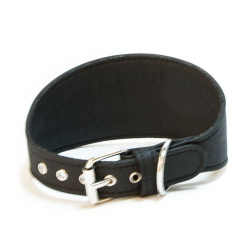 Collar sintético para galgos TK-Pet negro