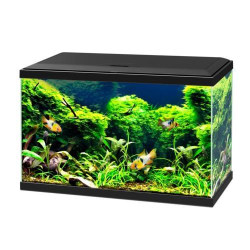 Kit de acuario Ciano Aqua 60 Led Bio negro