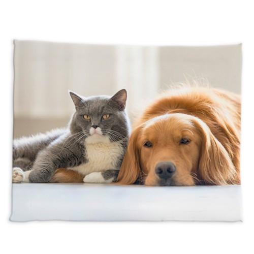 Cama personalizada con foto para mascotas
