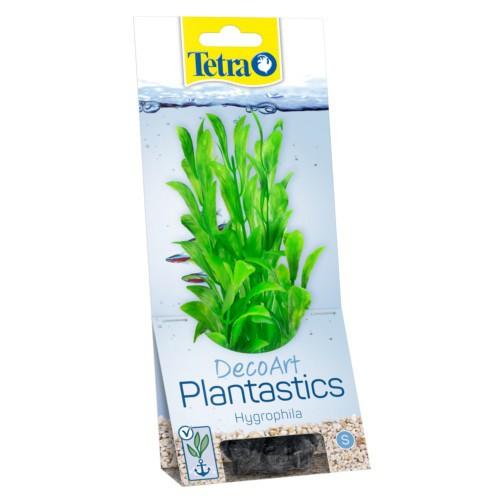 Plantas decorativas para acuarios Hygrophi