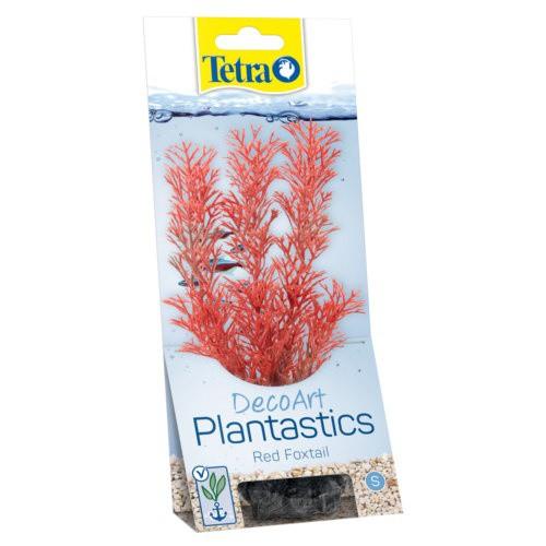 Plantas decorativas para acuarios Foxtail