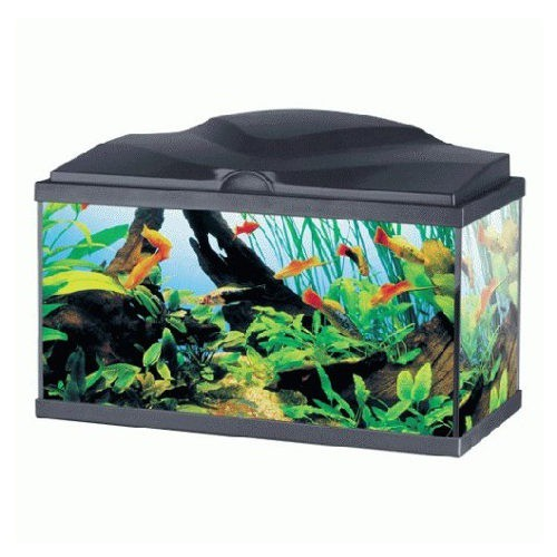 Acuario Ciano Aqua 60 Plus light Negro