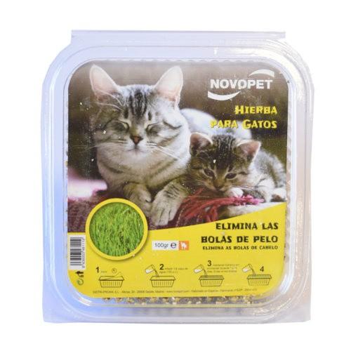 Hierba para gatos Novopet