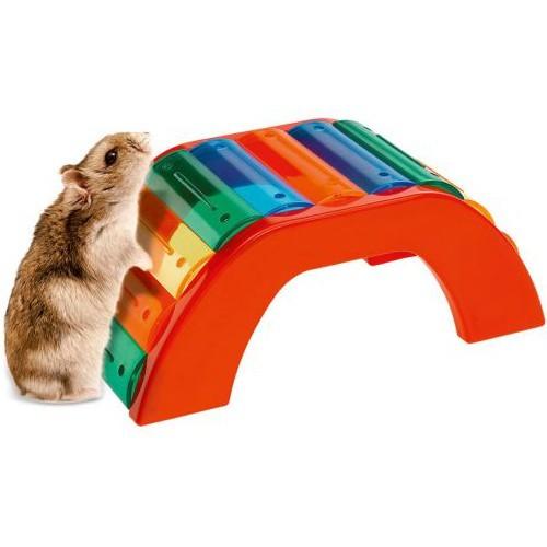 Puente de colores para hámster