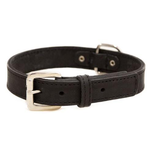 Collar de cuero para perros Namur negro