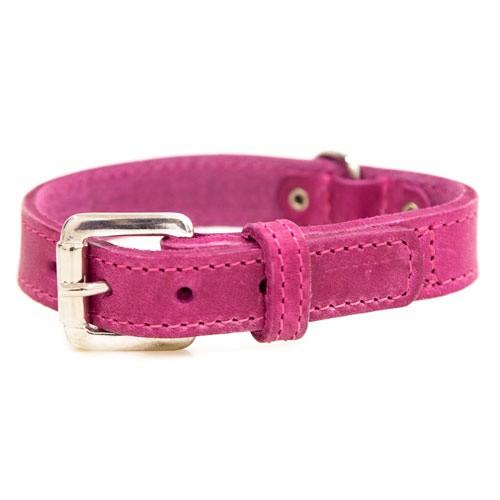 Collar de cuero para perros Namur rosa