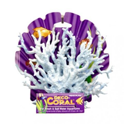 Coral azul para acuarios