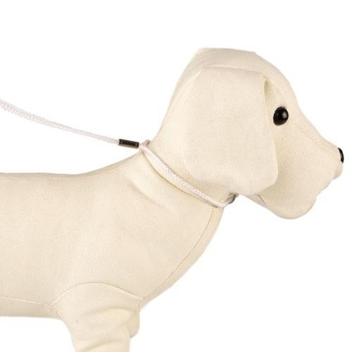 Collar-correa de exposición TK-Pet blanco