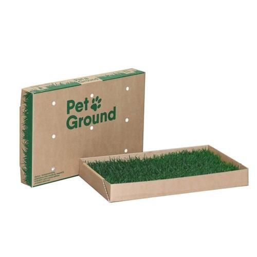 Empapador ecológico para perros Petground Pack Standard