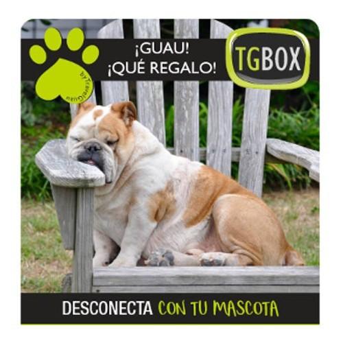 Desconecta con tu mascota TGBOX