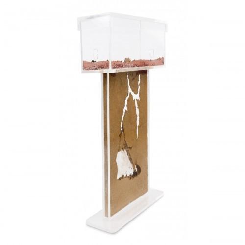 Hormiguero Anthouse de acrílico con caja de forrajeo