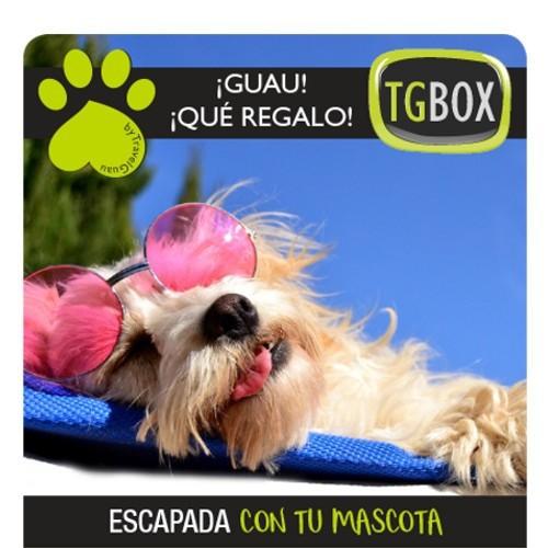 Escapada con tu mascota TGBOX