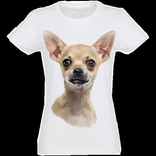 Camiseta Mujer Chihuahua color Blanco