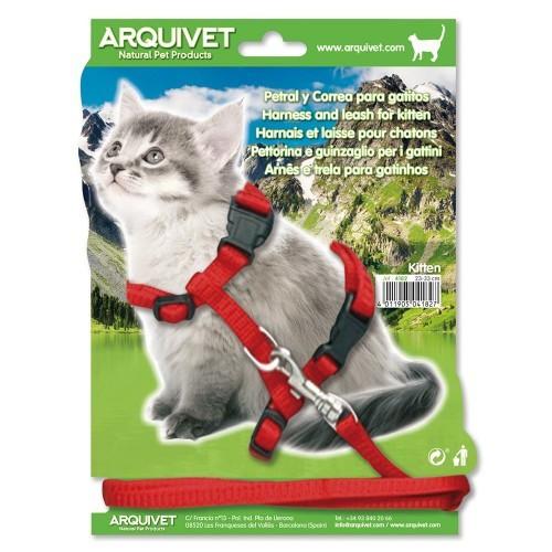 Petral y tirador para gatitos color Rojo