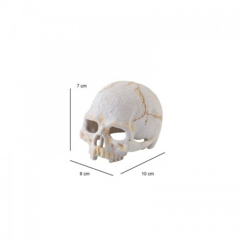 Refugio Dino primate Exo-Terra