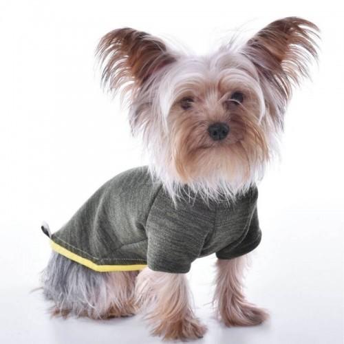 Jersey Nun Wind  para perros color Verde caquí