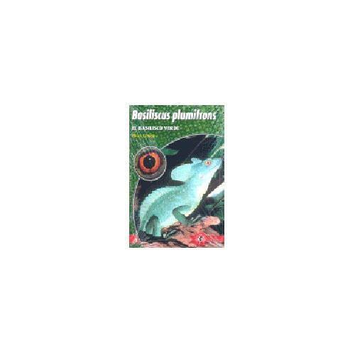Basilicus Plumifrons El Basilico Verde