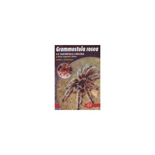 Grammostola rosea. La tarántula chilena y otras especies afines