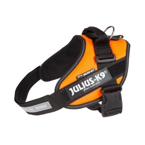 Arnés Julius K9 IDC UV para perros color Naranja