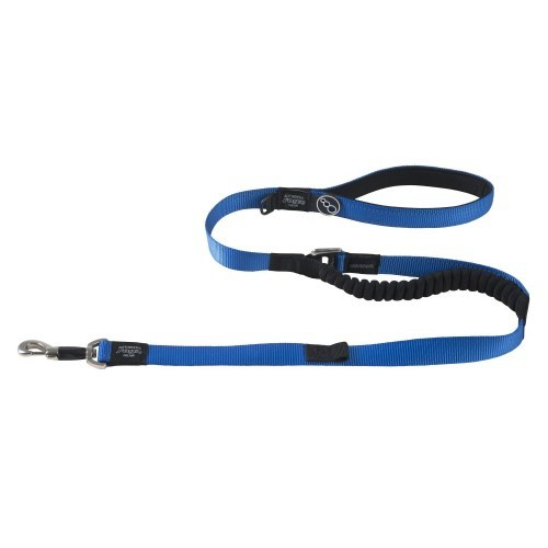 Correa para control con amortiguación para perros color Azul