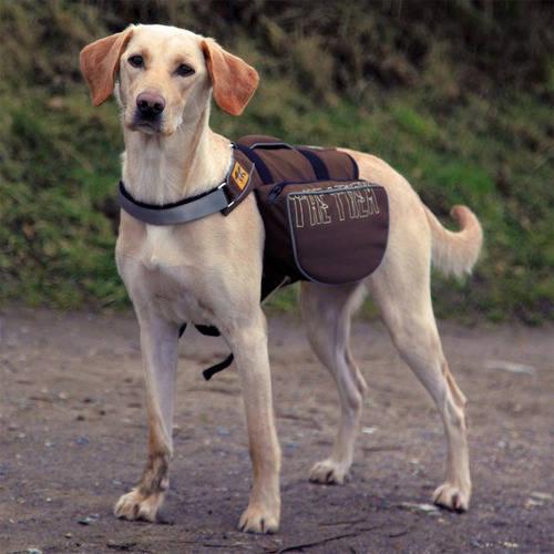 Alforja mochila para perro on the Trek de nylon color marrón y azul