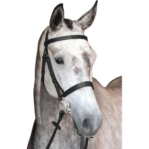Cabezada de piel Collegiate modelo Hunt para caballos color Negro