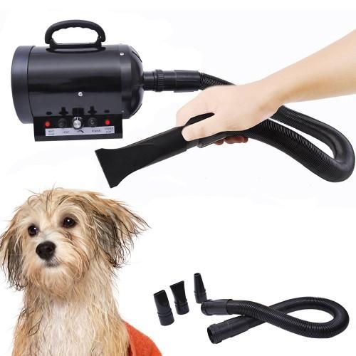 Secador de pelo Pawhut para mascotas color Negro