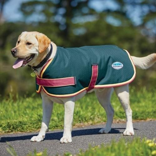 Abrigo estilo parka para perros color Cerceta/Cereza/Amarillo