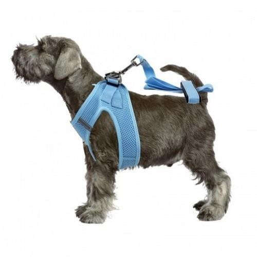 Arnés Air Soft con correa para perros color Azul