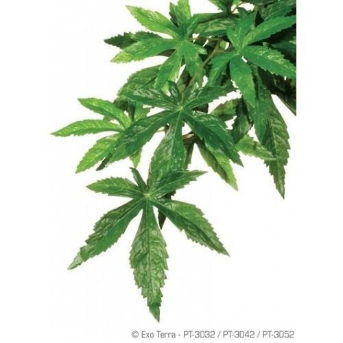 Planta de seda Abuliton para reptiles