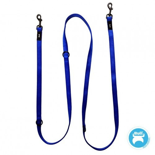 Correa de adiestramiento multiposiciones color Azul