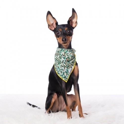 Bandana para perros estampado Camuflaje color Verde