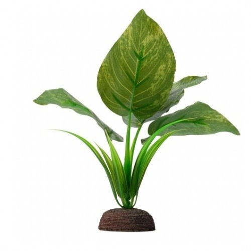 Fluval Plant Varigated Lizard's 15cm color Verde