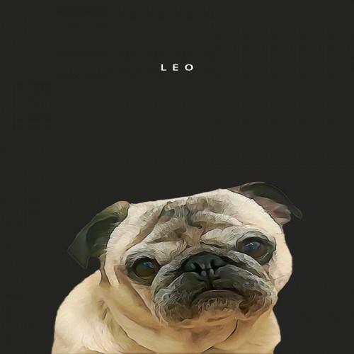 Retrato personalizado de tu mascota color Negro