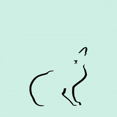 Ilustración de gato doméstico sin marco color Mint